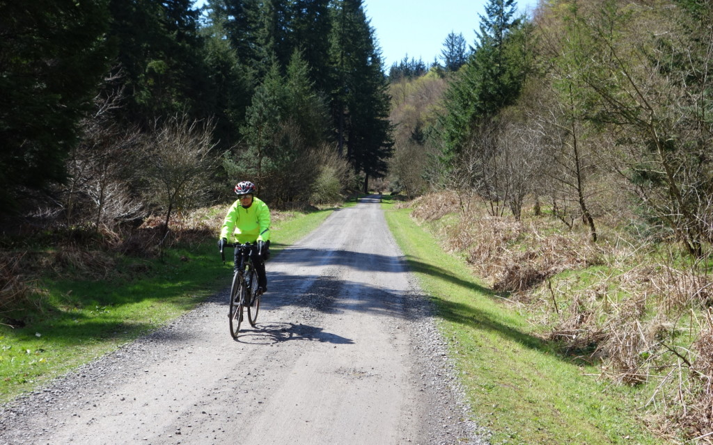 Sue on Hamsterley Forest's Forest Drive