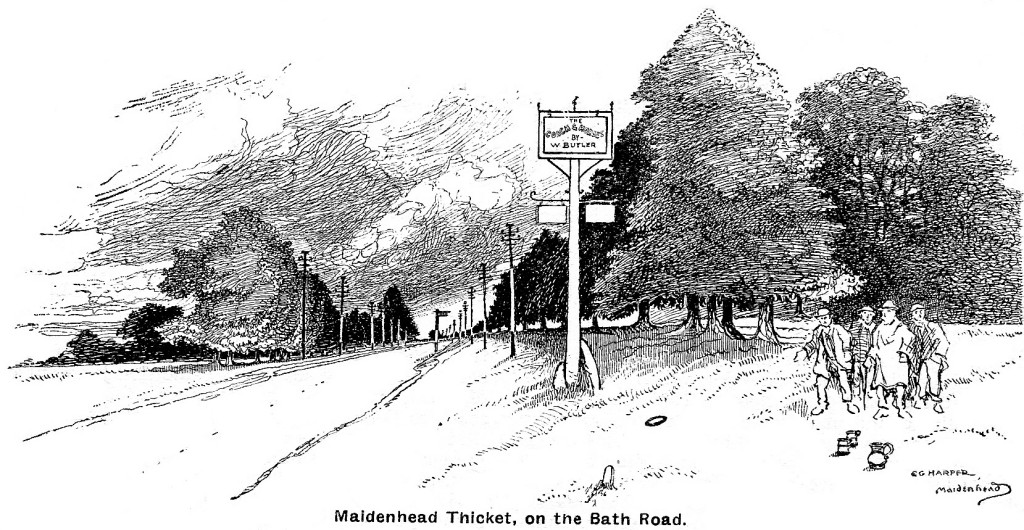 maidenhead_thicket_drwgr